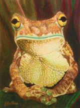 His-Royal-Froggyness